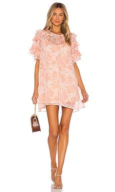 Marlena Dress Tularosa $106