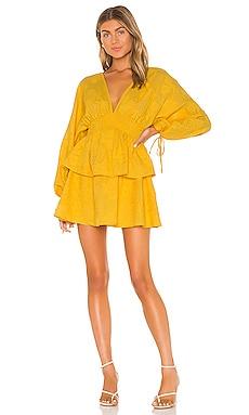 Marvista Dress Tularosa $258