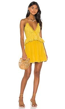 Jordina Mini Dress Tularosa $169