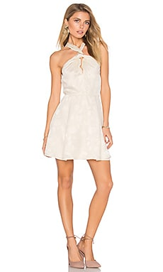 Doheney Dress in Ivory