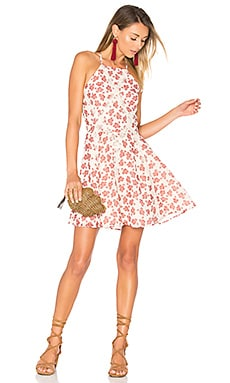 Helix Dress in Floral Paisley