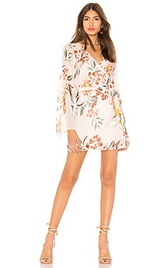 Robin Dress Tularosa $168