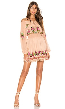Calista Embroidered Dress Tularosa $258
