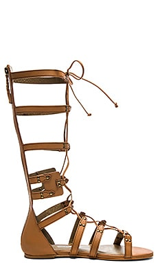 Twelfth Street By Cynthia Vincent Franky Sandal in Cognac