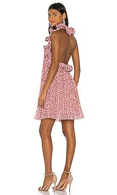 Mimi Dress AMUR $313