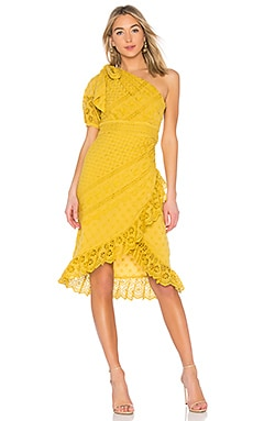 Gwyneth Dress Ulla Johnson $520 Collections