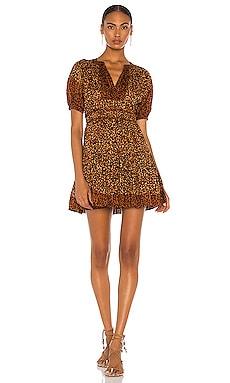 Mariana Mini Dress Ulla Johnson $375
