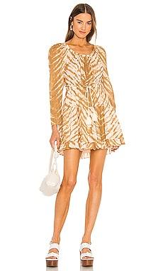Naiara Dress Ulla Johnson $395
