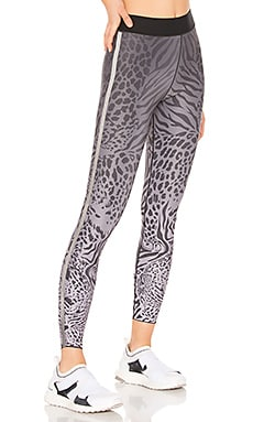 Ultra Panthera Legging ultracor $109