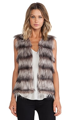 The Ice Breaker Vest in Multi