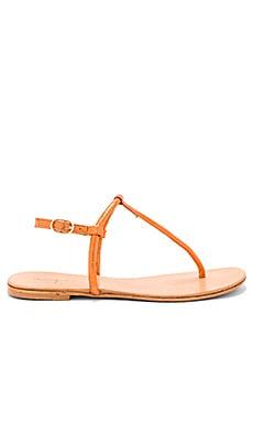 Mako Sandal