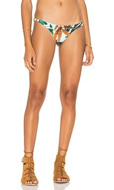 Samba Bikini Bottom