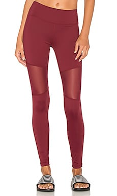 Sycamore Tight in Burgundy