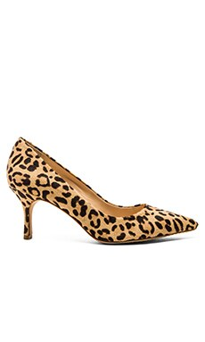 Vince Camuto Vivienne Cor Hair Heel in Leopard