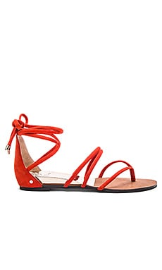 Vince Camuto Adalson Sandal in Juicy