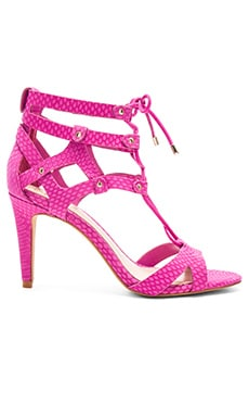 Vince Camuto Claran Heel in Pink Orchid