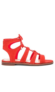 Vince Camuto Tany Sandal in Juicy