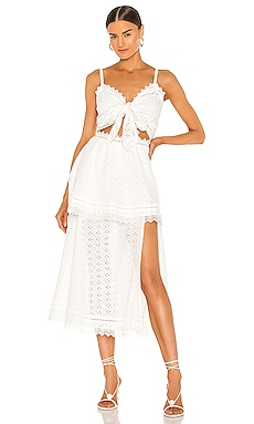Panna Cotta Maxi Dress V. Chapman $435 NEW