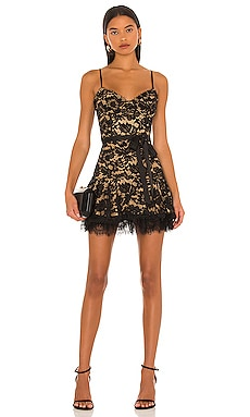 Candice Dress V. Chapman $395