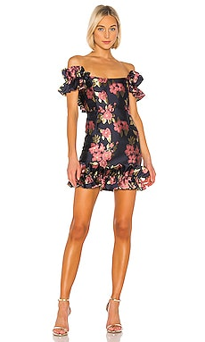 Hollyhock Dress V. Chapman $345