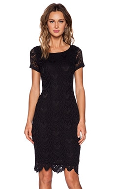 Velvet by Graham & Spencer Kiara Lace Zoya Dress in Black