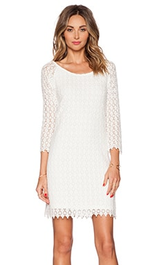 Velvet by Graham & Spencer Spring Lace Noelle Dress in White