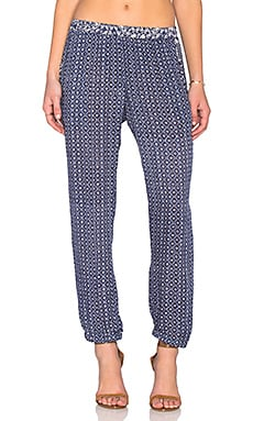 Velvet by Graham & Spencer Endy Casablanca Print Jogger Pant in Navy & Cream