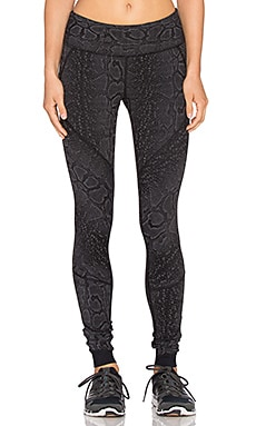 Vimmia Reversible Speed Pant in Python Jacquard