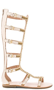 Velocity Sandal in Gold