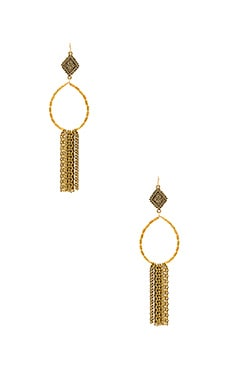 Hailey Hoop Earrings in Gold
