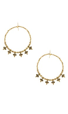 Mary Earrings in Gold