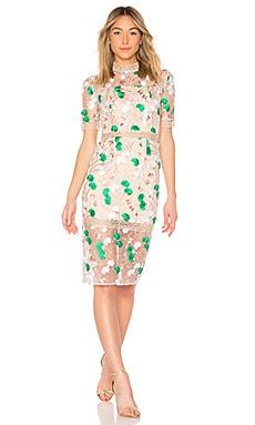 Купить Платье mira - VONE кремового цвета