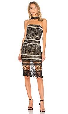 Choker Neck Lace Dress