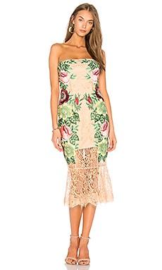 Roya Dress