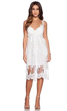 The Allflower Event Dress