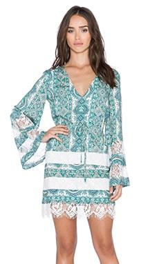 The Allflower Swift Dress in Paisley Print