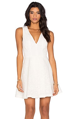V Neck Dress in Netted Lace