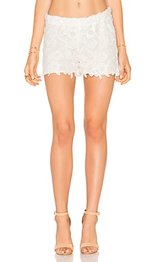 Crochet Short in White Crochet