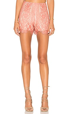 Dew Drop Short