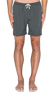 Wellen Classic Pops Volley Short in Charcoal