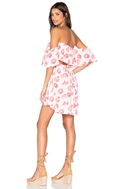 Wildfox Couture Grapefruit Dress in Arizona Blush