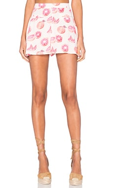 Wildfox Couture Grapefruit Shorts in Arizona Blush