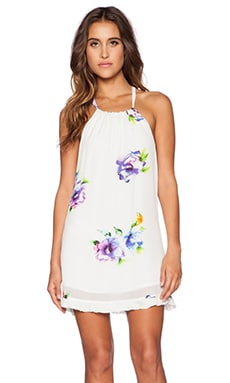 Winston White Pica Mini Dress in Multi