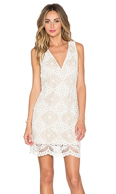 Winston White Sahara Dress in Cream Lace