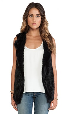 Wish Temper Rabbit Fur Vest in Black