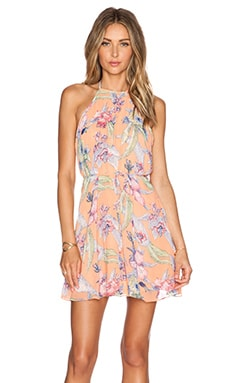 WYLDR Ex Girlfriend Dress in Sunset Floral