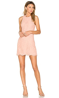 Vera Dress in Blush