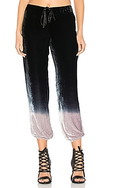 Jaymee Pant in Eclipse Ombre
