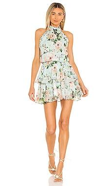Meghan Dress Yumi Kim $228