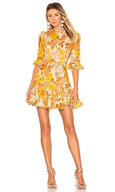 Primrose Flutter Dress Zimmermann $850